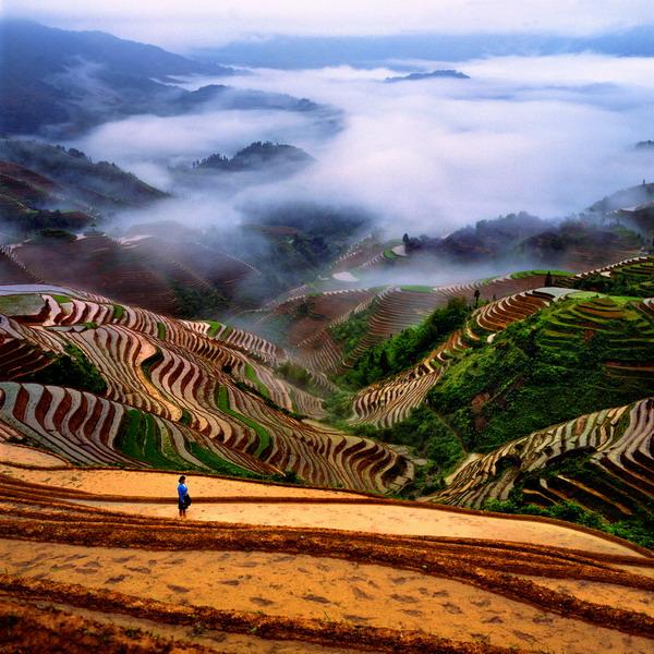 Природата в китай