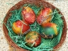 Боядисване на яйца - боядисване с памук