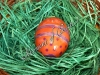 Боядисване на яйца с цветно лепило