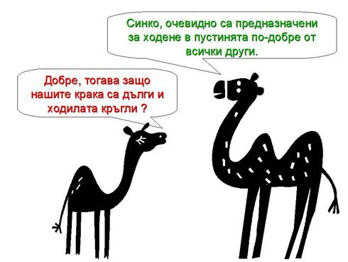 Камилска история