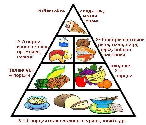 Хранителна пирамида