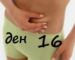Диета 16-ти ден