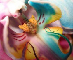 Орхидея - тест за негативна енергия