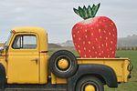 Камион за ягоди