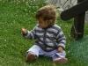 Вики в тревата