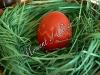 Боядисване на Великденски яйца - украса с восък