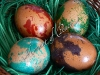 Боядисване на яйца с олио в боята